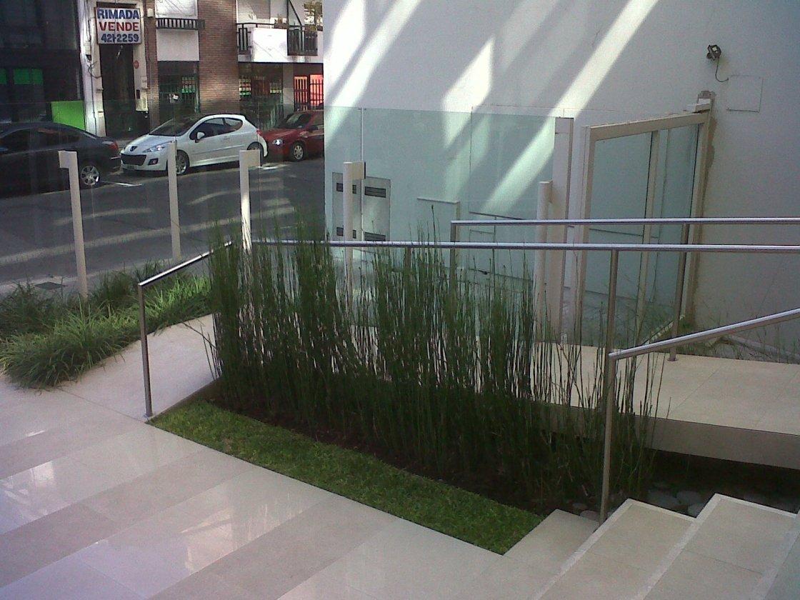 En la Calle Guemes de Rosario, las plantas...bien.