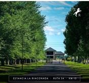 Hoy el paisaje de La Rinconada se ve asi. 2020